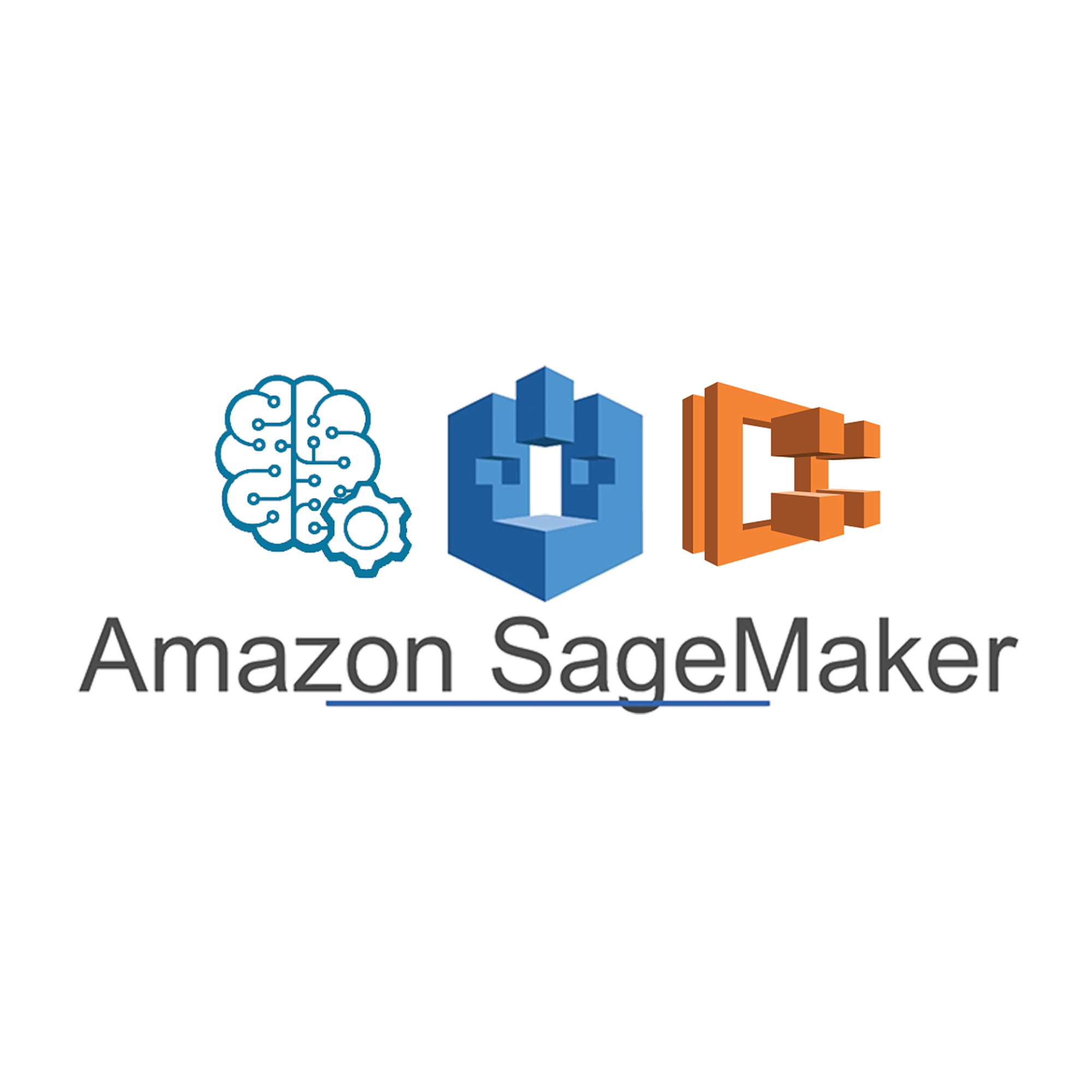 Using a custom model for ML inference with Amazon SageMaker